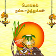 Pongal Celebration Card